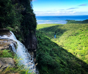 The unique landscape of Iriomote Island, Japan