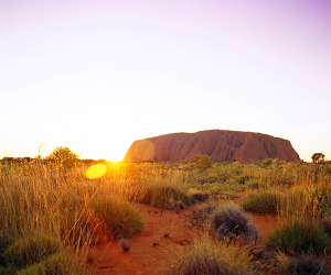 Sunset at Uluru. Photograph by Chris Kapa
