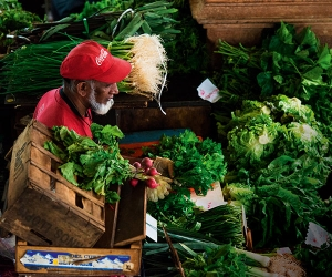 A veg delivery in Port Louis, Mauritius. Mike Robinson / Alamy Stock Photo